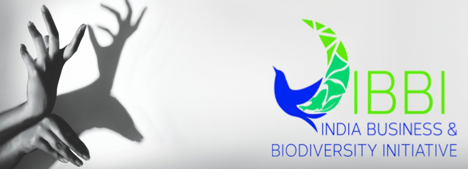 Indian Business and Biodiversity Initiative (IBBI)